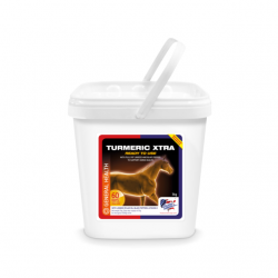 TURMERIC (3 KG)  MARCHAL  EQUINE AMERICA