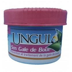 SOS GALE DE BOUE (480 ML)