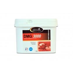 DMG 3000 (1,3 KG)  MARCHAL  HORSE MASTER